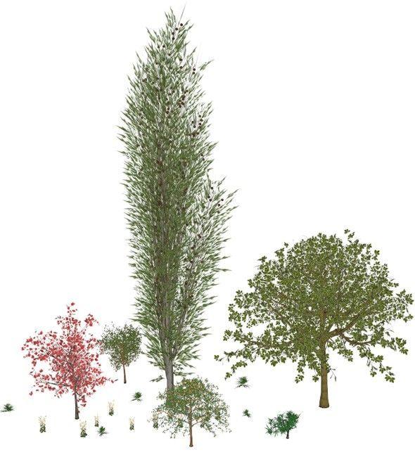 Stromy vygenerované pluginem Tree Maker
